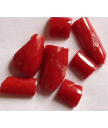 Forme varie corallo rosso